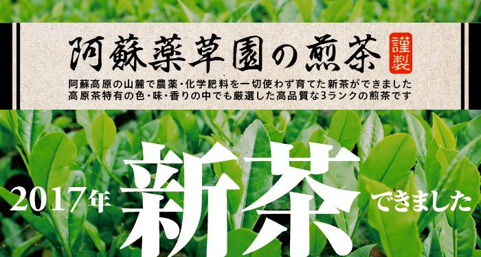 阿蘇薬草園の煎茶*2017年新茶